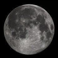 A Bright Moon Lit Night
